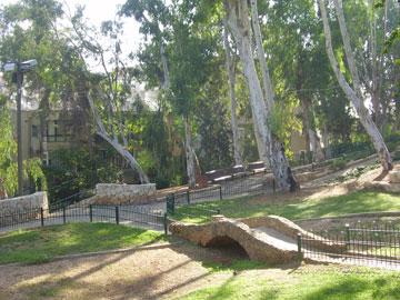 פשוט צל: גן אברהם הוותיק ברמת גן. האקליפטוסים נותנים צל, בלי יותר מדי אפקטים (צילום: dr. avishai teicher, cc)