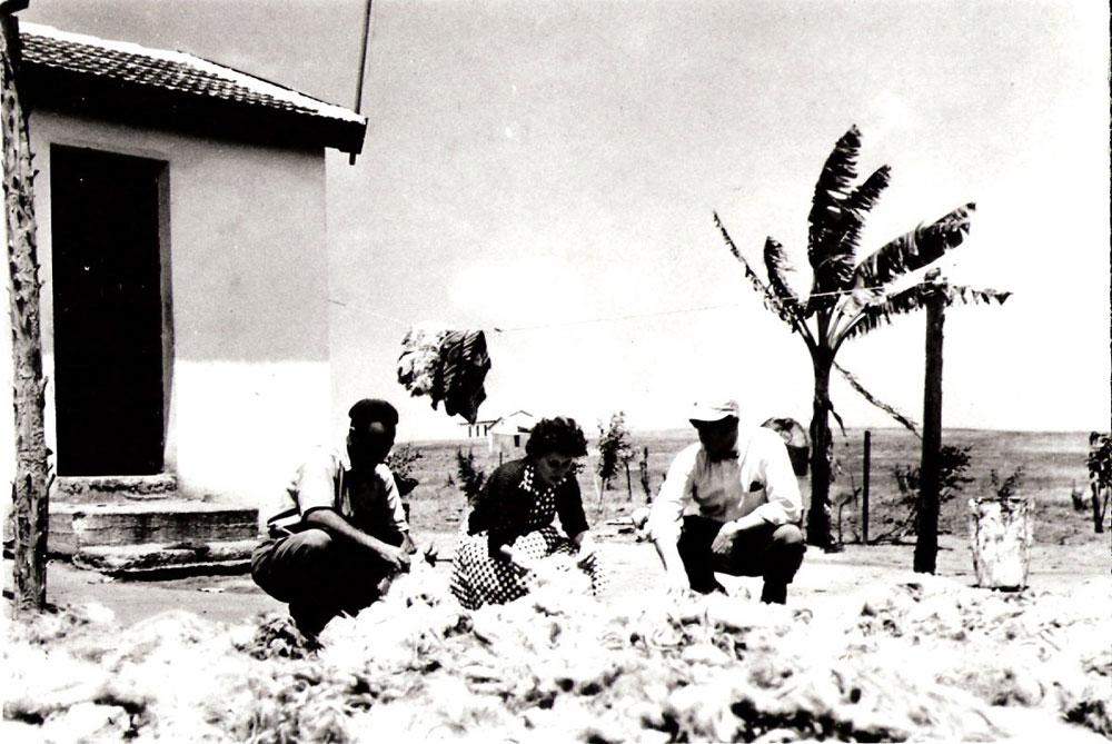 ברקע הבית כפי שהיה בשנות ה-50, משמאל הסב רחמים חג'ג' ובמרכז רות דיין, שניהלה אז את מפעל ''משכית'', בוחנים את הצמר שחולק לנשות המושב לאריגה (צילום: מרכז תיעוד תל מונד)