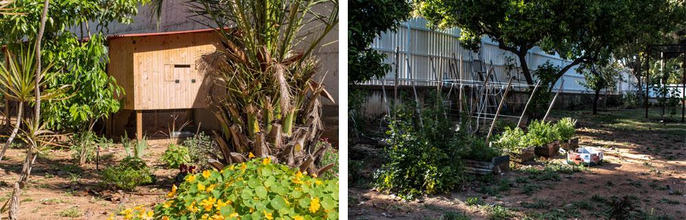 גם את הגינה מחדשים גיא ובן זוגו רוסלן אט אט: סככת גפנים נבנתה בחזית הבית, ובצדו גינת ירק ותבלינים, ולול תרנגולות חופש (צילום: רוסלן אוטבייב)