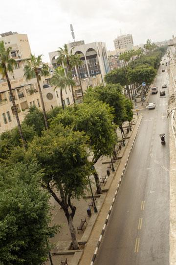 מפוארת לא פחות משדרות רוטשילד, רק הרבה פחות ממותגת. שדרות ירושלים (צילום: ורד נבון)