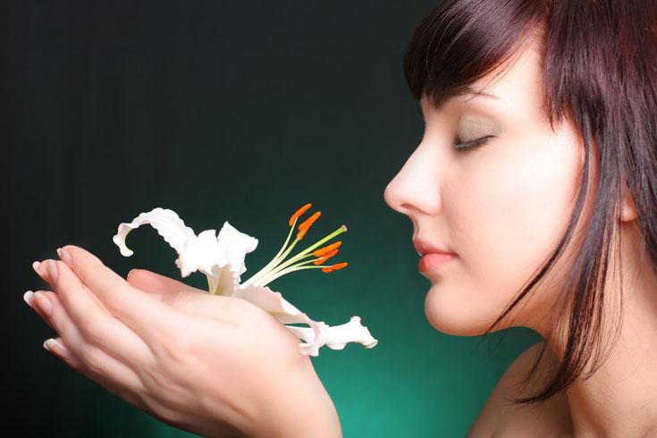 מעבר ליופי ולאסתטיקה יש לפרח כוח ריפוי, משהו שלא רואים