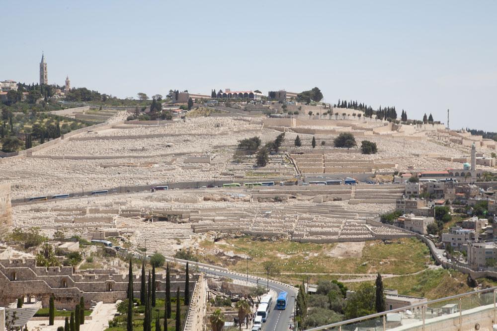 את זה רואים ממפלס הגג, המרוהט בספסלים מבונים: הנוף עוצר הנשימה של הר הזיתים (ומיד, גם הר הבית) (צילום: טל נסים)