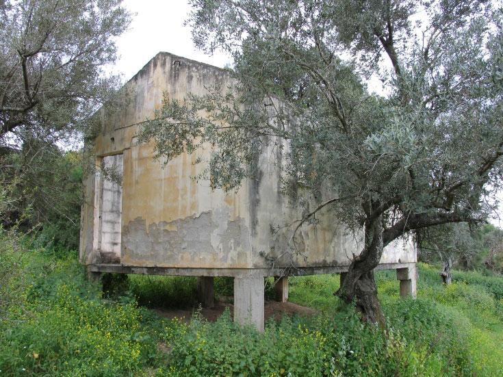 בית מגורים לשעבר, סוף שנות הארבעים, ציפורי הישנה (צילום: שרון רז)