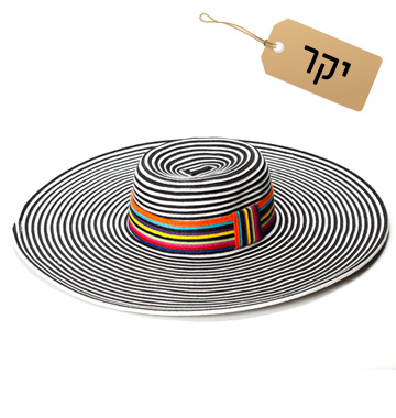 למבנה פנים אובלי: כובע רחב שוליים, 280 שקל, ניין ווסט  (צילום: דן לב)