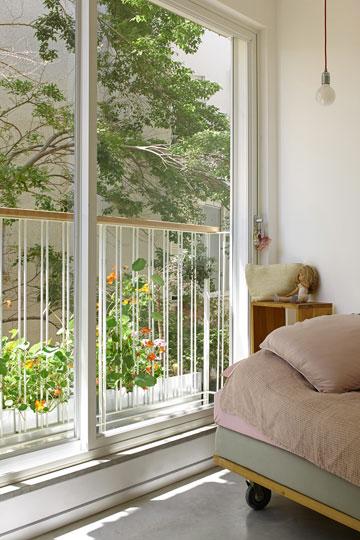 ירוק בחלונות החדר של תמר (צילום: עדי גלעד)