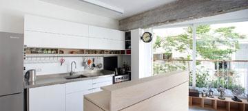 בחלונות שבאזור המטבח נשתלו בעיקר צמחי תבלין – נענע, מליסה, אורגנו, זעתר ועוד (צילום: עדי גלעד)