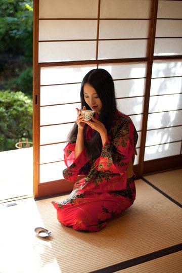 המתחם, שיעוצב בהשראה יפנית מובהקת, יכלול בין השאר: סושי בר; בית תה יפני, בו יוכל הקהל להתרווח, לרכוש תה ומוצרים נלווים ואף לשמוע הרצאות על סגולות התה היפני  (צילום: thinkstock)