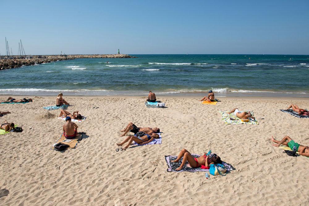 ''חוף הכלבים'', זה שצמוד לחוף הדתיים, ידוע כחוף שאליו מגיעים לבד (צילום: אילן נחום)