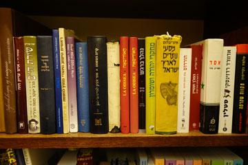 אחד ממדפי הספרים בלשכת הנשיא (צילום: מיכאל יעקובסון)