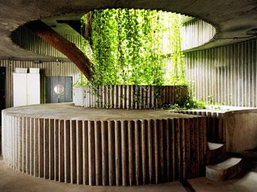 המבנה של המסעדה ומועדון הלילה אינו תואם את תפישת החלל המערבית: הוא מתיר לטבע להתמזג עם האדריכלות, בעזרת עלי עץ המנגו שחודרים פנימה (צילום: nelson kon)