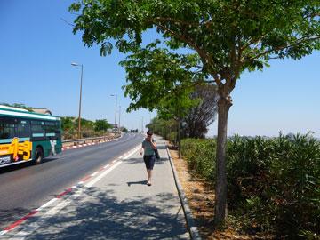 מסלול ההליכה היום (צילום: ברוידא מעוז אדריכלות נוף בע''מ)