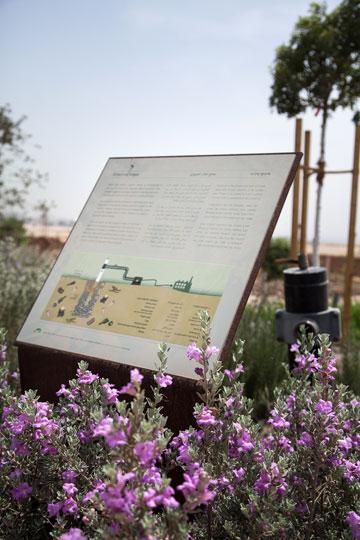 המזבלה שהפכה לפארק ענק. חיריה, כיום פארק אריאל שרון (צילום: טל ניסים)