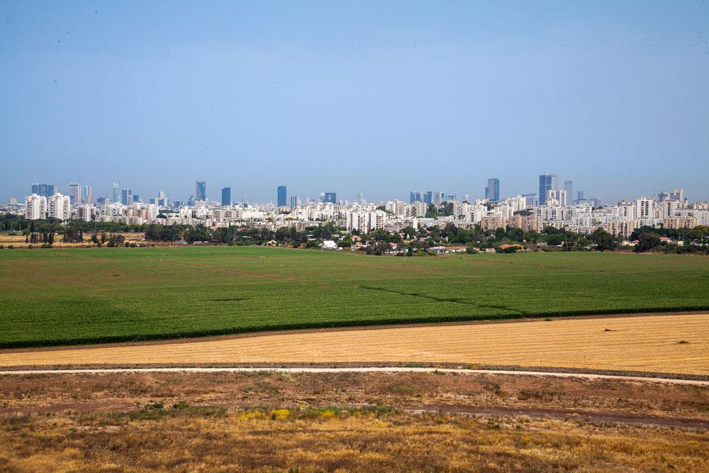 וזה הנוף שייראה מפארק שרון, ה''סנטראל פארק'' של גוש דן (צילום: טל ניסים)