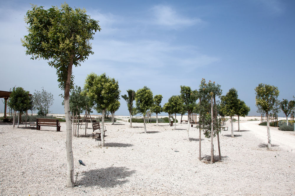 שטח הפארק כולו 8,000 דונמים והוא גובל בערי גוש דן: תל אביב, אור יהודה, רמת גן, חולון ואזור. גם מסעדות, אמפי ומגרשי ספורט יהיו כאן (צילום: טל ניסים)