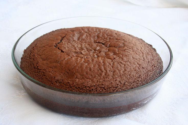 עוגת שוקולד במיקרוגל (צילום: אסנת לסטר)