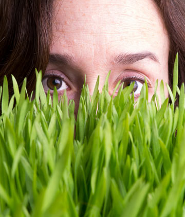 הדשא של השכן ירוק יותר (צילום: Dreamstime)