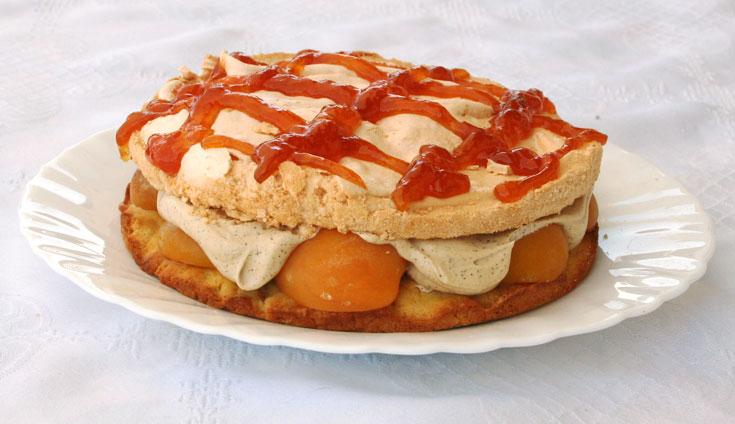עוגת שכבות עם משמשים (צילום: אסנת לסטר         )