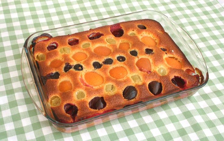 עוגת פירות בחושה (צילום: אסנת לסטר         )
