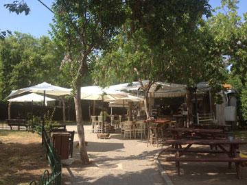 בית קפה בגינה (צילום: נעמה ריבה)