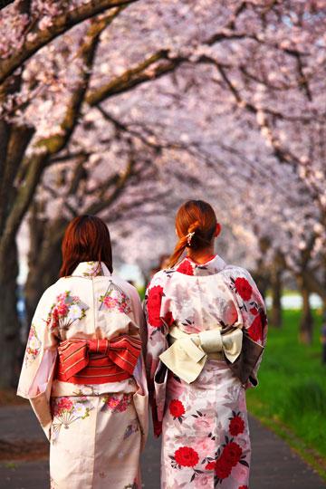 מדי פעם תראו ברחובות גיישה בלבוש מסורתי (צילום: shutterastock)