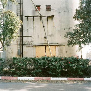 האסם בגניגר (צילום: גיא רז)