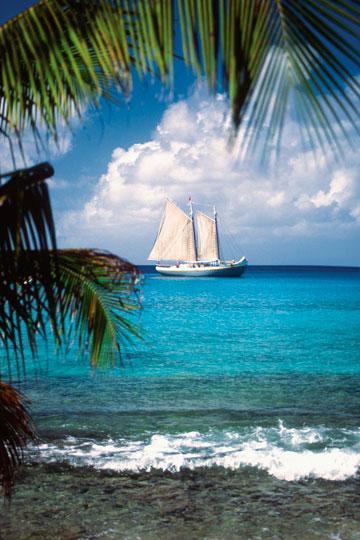 מוסטיק, האיים הקריביים. רק לעשירים (צילום: thinkstock)