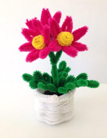 פרחים ממנקה מקטרות (צילום: ילנה ברסקי )