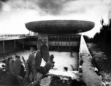 במרום גבעה קירחת (מתוך אוסף נחום זולוטוב, צילום: רן ארדה)