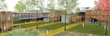 כך ישולב העץ כחלק מהקונספט של בית הספר ברמת אפעל (הדמיה: קיסלוב קיי אדריכלים - אטלייה קיי)
