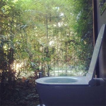 שירותי האורחים והצמחייה שמעבר לחלון (צילום: נעמה ריבה)