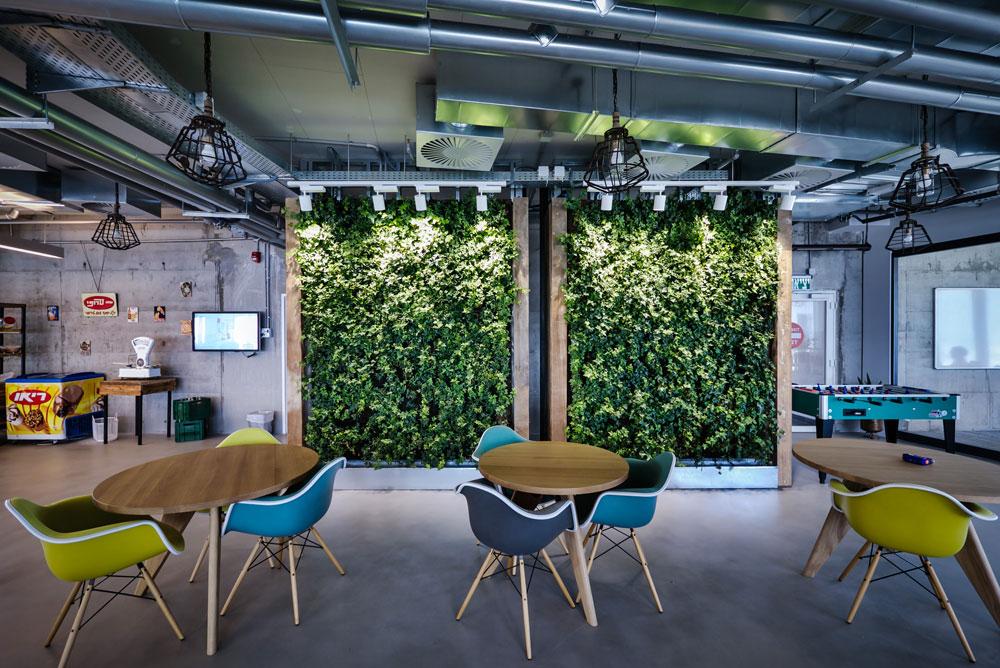 קיר ירוק של צמחייה אמיתית מכניס נגיעה של טבע לאווירת העבודה הצייתנית שמתבקשת מעובדי תאגיד אמריקאי, בסגנון עדות כלובי הזהב (צילום: איתי סיקולסקי)