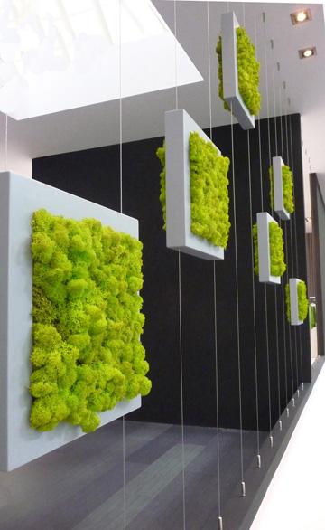 אריחי טחב, לקיר ירוק. 950 שקלים ליחידה (צילום: כורש בית לעיצוב)