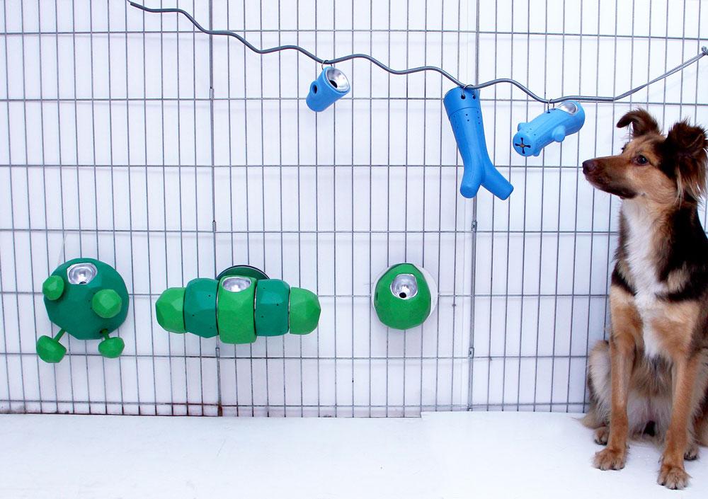 צעצועים ייעודיים לכלבים הנתונים בכלבייה, אפשר לפגוש בפרויקט הגמר של עינב חממי. גירוי שכלי ופעילות גופנית בתא הקטן (צילום: רונן טופלברג)