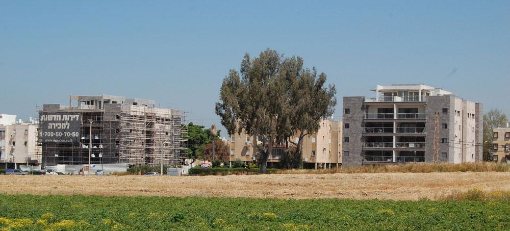 הפרויקט ברחוב האילנות בשכונת גן רש''ל בהרצליה (למעלה ולמטה). כל דירה זוכה בממ''ד ובמרפסת, וארבע משפחות חדשות מצטרפות לכל בניין (צילום: אדריכל דרור רימוק, יזם: חברת רנובו בע''מ)