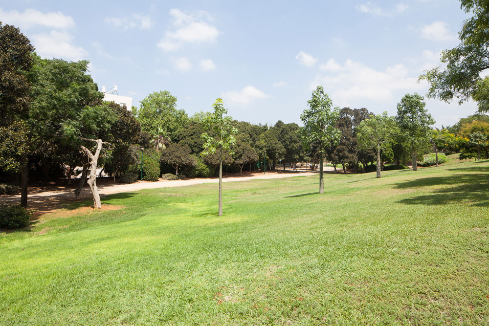 """פארק צה""""ל - הלב של השכונה, תוכנן על ידי אדריכלי הנוף ליפא יהלום ודן צור, לימים זוכי פרס ישראל (צילום: טל נסים)"""