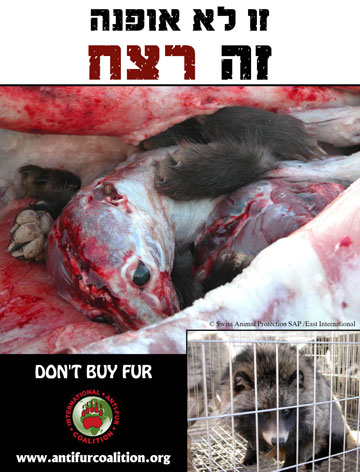 קמפיין נגד פרוות (מתוך קמפיין IAFC anti fur POSTERS)