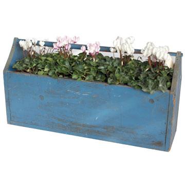 עציץ עם פרחים מגביר את האנרגיה בבית ומתאים במיוחד למטבח (באק יארד, 560 שקל) (צילום: יעל דרנוב)