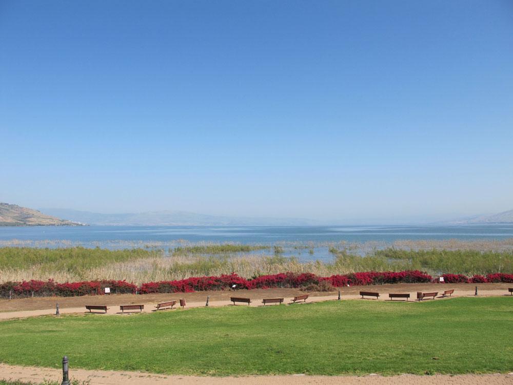 מבט מבית גבריאל אל חוף הכנרת, דרך מדשאה נרחבת המפרידה בין המבנה למים, היא אחד משיאיו של המקום (צילום: מיכאל יעקובסון)