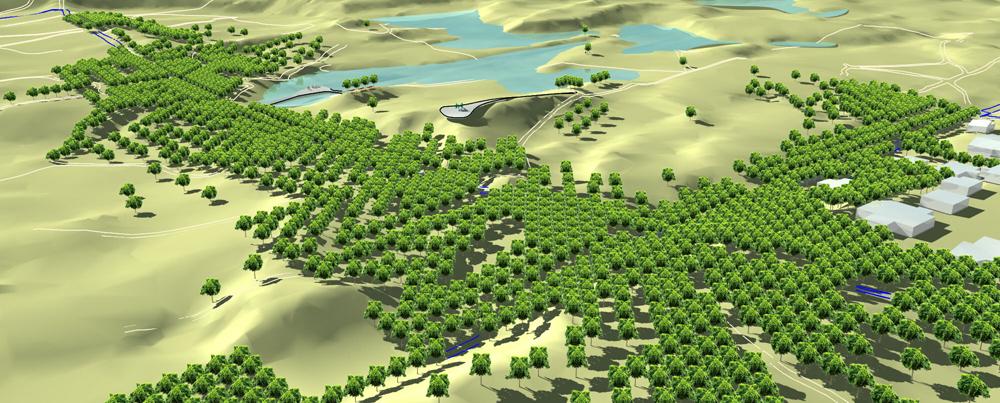 אריאל אברהם ויוליה לאונטייב מציעים שתילה מאסיבית של עצים, כדי להעניק צל למבקרים ולארגן את השטח הטבעי לנוחותם (הדמיה: אריאל אברהם ויוליה לאונטייב)
