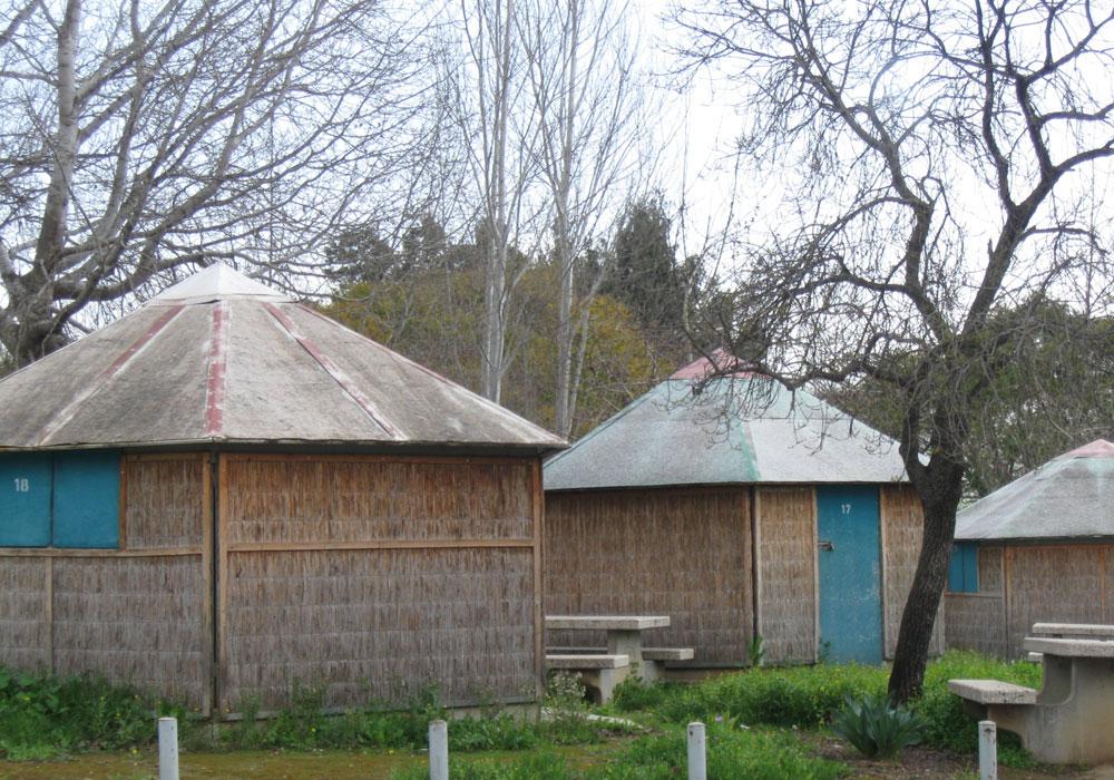 חורשת טל. אפשרות ללינה בבונגלוס, בבתי נופש או באוהלים (צילום: אריאלה אפללו)