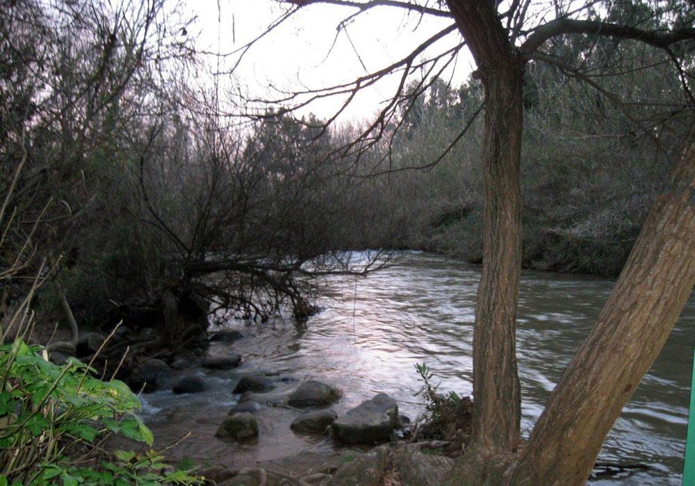 אפלולית קסומה (צילום: אריאלה אפללו)