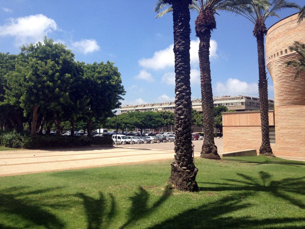 כאן יוקם הפרויקט: בין בית הכנסת ע''ש צימבליסטה (מימין),  בניין דן דוד ובניין הסנאט של אוניברסיטת תל אביב (צילום: נעמה ריבה)