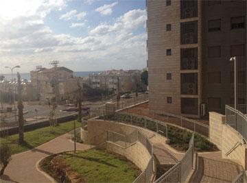 שכונה חדשה בחיפה. במקום עצים ותיקים שנכרתו - דשא. חסר משמעות (צילום: נעמה ריבה)