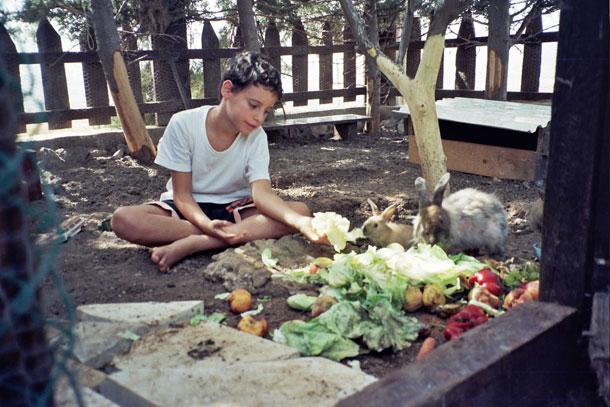 מרצפת השוק לפינת החי הביתית. אורן מאכיל ארנבות בכרוב (צילום: אסנת לסטר)