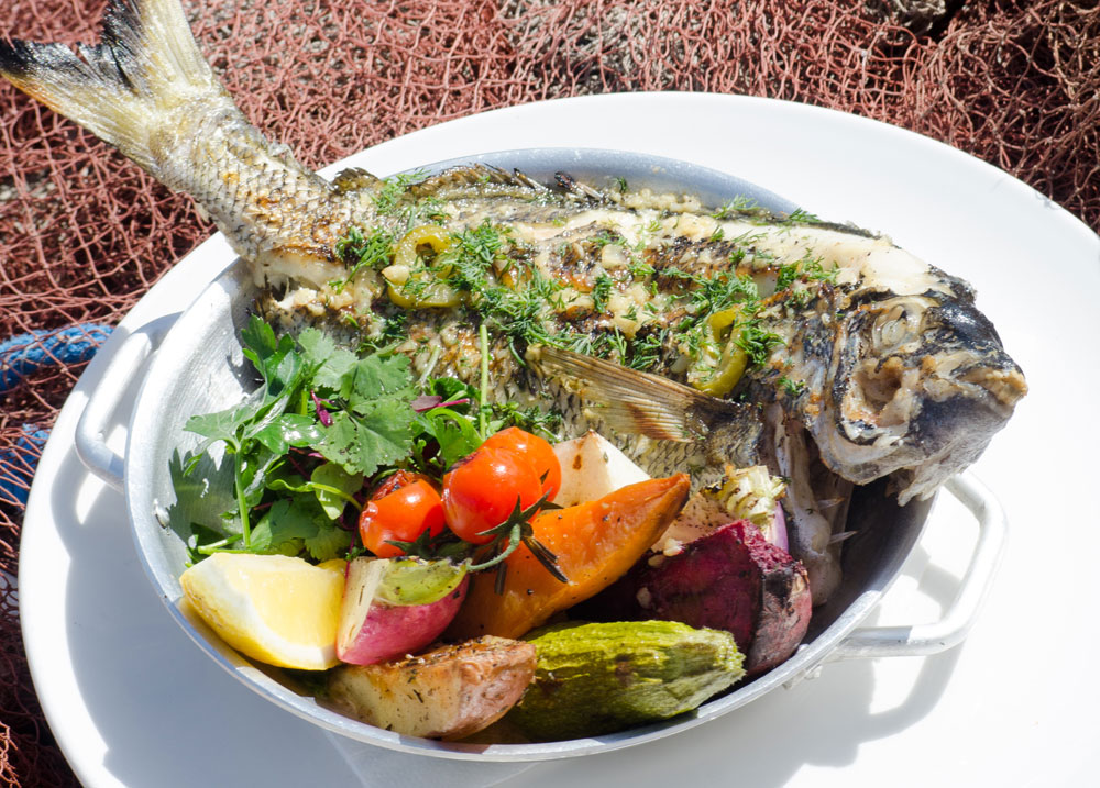 סרגוס בתנור עם ירקות שוק (צילום: יפת בשבקין)