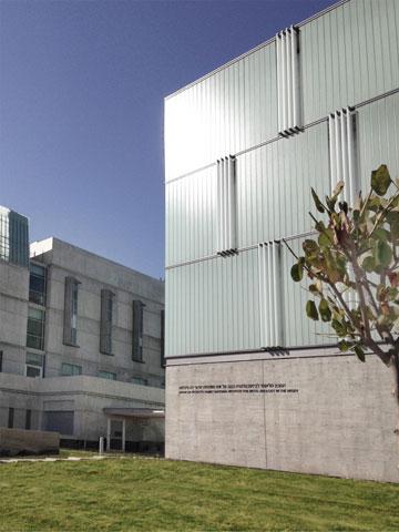 משמאל: הבניין הישן של המכון לביוטכנולוגיה, שאותו תכננה עדה כרמי-מלמד. הפעם הקפידו על דלתות רחבות (צילום: דן חיוטין)