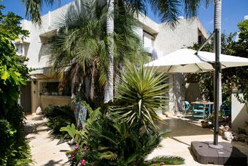 בית משפחת זלטקין בהרצליה. מימין החצר שאליה יוצאים מפינת האוכל (צילום: שירן כרמל)
