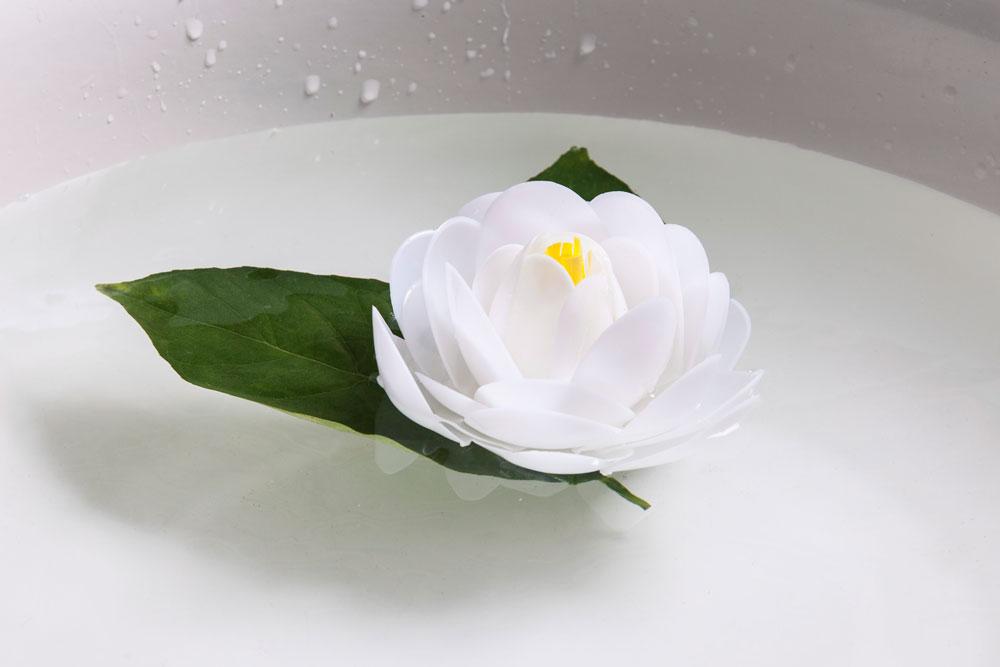 פרח פלסטיק, גרסת הכפיות (צילום: טל ניסים)