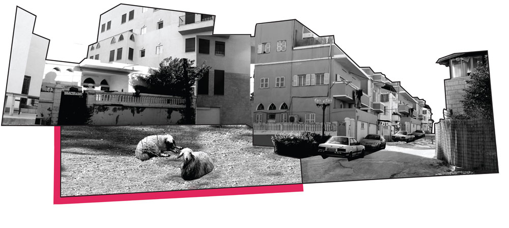 הפרויקט האחרון הוא תיאורטי: איליה מילנר בודקת את המתרחש בשכונת עג'מי ביפו, ומאתגרת את מנגנוני הכוח שהאדריכלים מתפקדים בהם ככלי משחק (קולאז': איליה מילנר)
