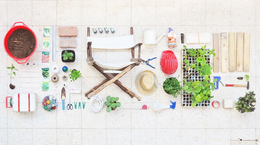 בונים גינה עם חפצים מהבית ומהרחוב (צילום: אביגיל רוביני)